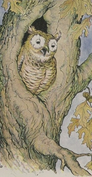 THE OWL AND THE GRASSHOPPER – Aesop Fables for Kids