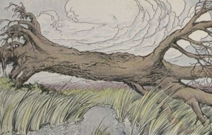 THE OAK AND THE REEDS – Aesop Fables for Kids