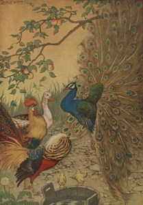 Read more about the article THE PEACOCK – Aesop Fables for Kids