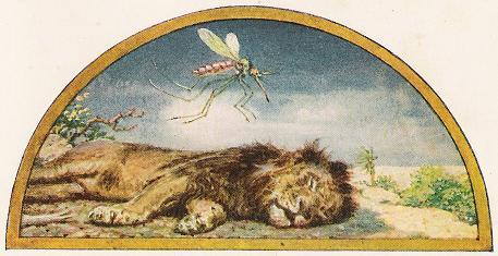 The Lion And The Gnat – Jean De La Fontaine Fables