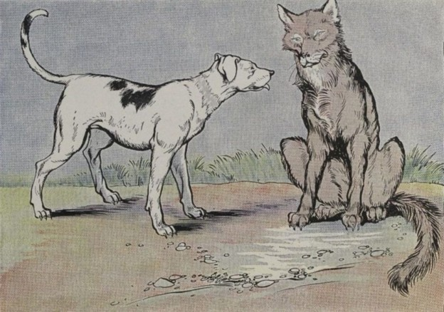 THE WOLF AND THE HOUSE DOG – Aesop Fables for Kids