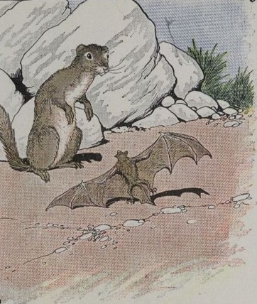 THE BAT AND THE WEASELS – Aesop Fables for Kids