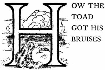 03 How the Toad Got His Bruises