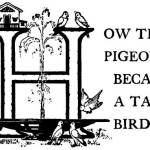 Read more about the article How the Pigeon Became a Tame Bird – Brazilian Fairy Tales
