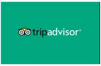 해외 여행 정보
