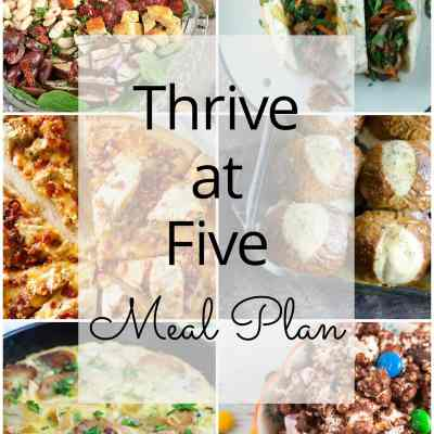 Thrive at Five Meal Plan – Week #22