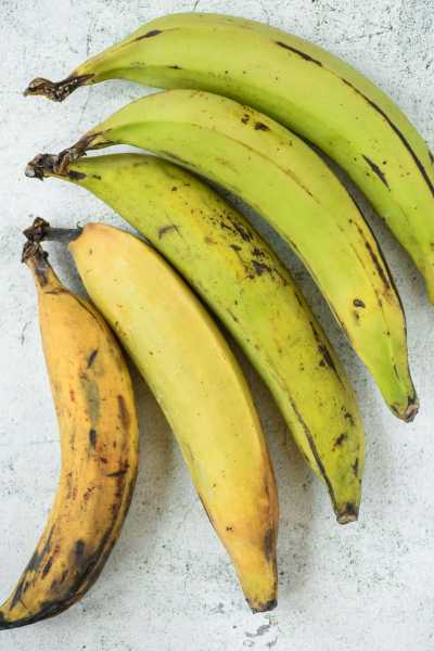 Latin Caribbean Food: Plantains