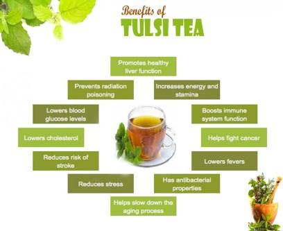 benefits-of-tulsi-tea_52dd1ee5e6362_w1500