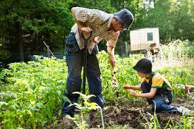 gardening4