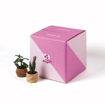 caisse carton personnalisable e-commerce