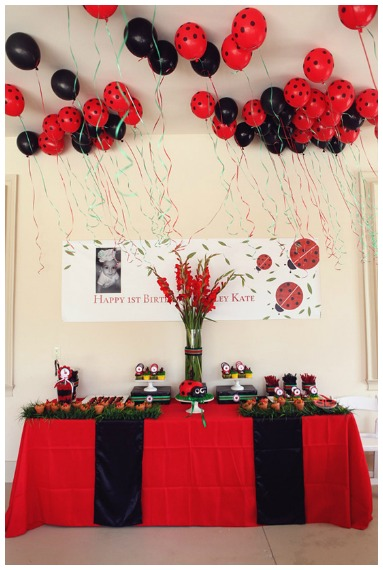 Ladybug Party IIdeas
