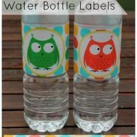 Printable Owl Water Bottle Labels