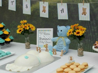 Blue And Yellow Teddy Bear Baby Shower