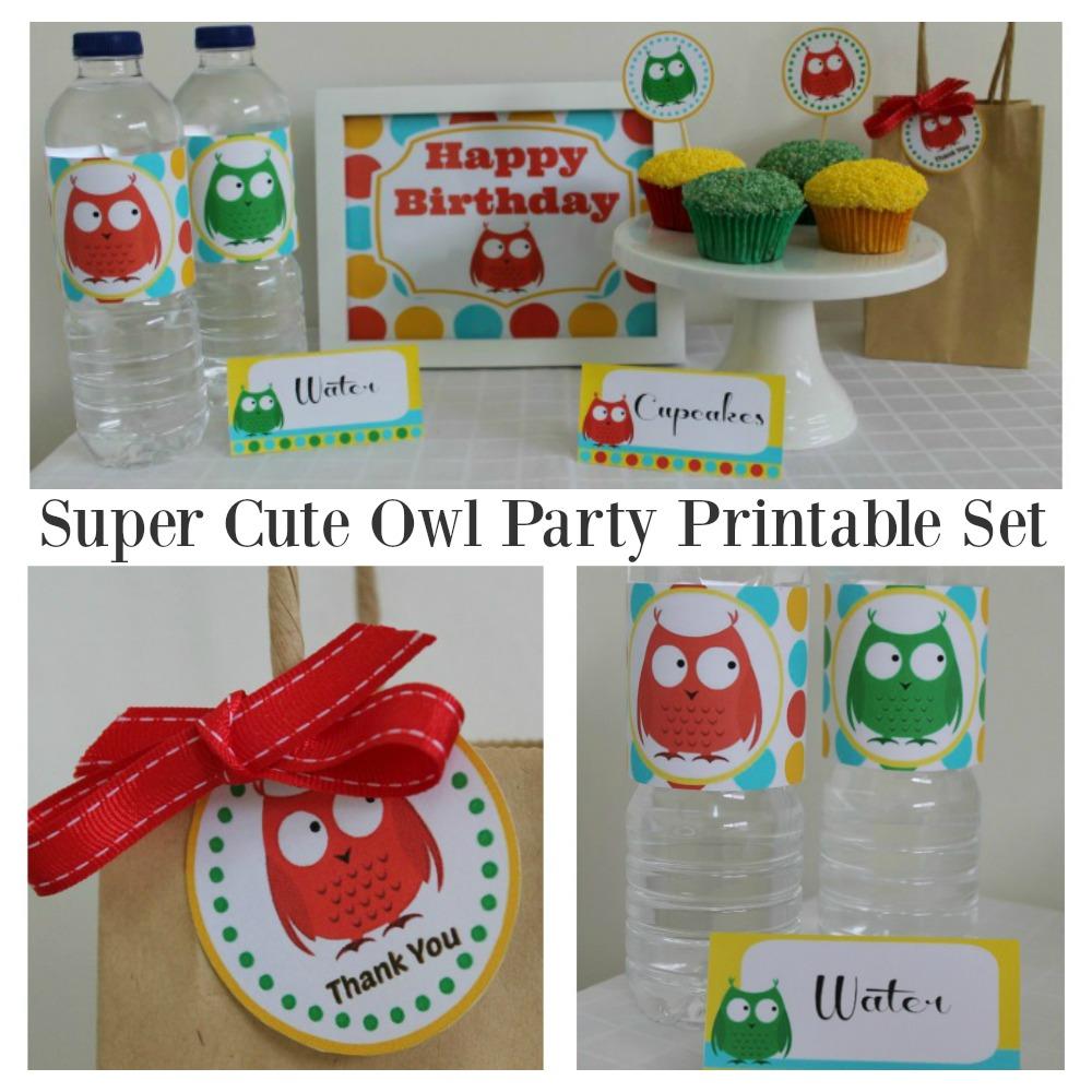 Owl Party Printable Set