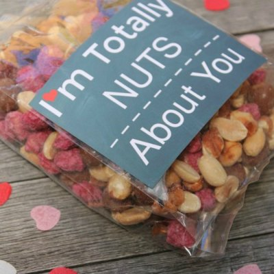 "Super Fun ""Nuts About You"" Free Valentine Printable"