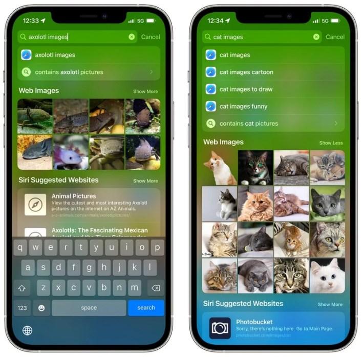 Apple iOS 15 Spotlight Bildersuche