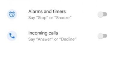 Google Assistant Quick Phrases