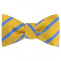 English Setter by Kay Nine Design navy blue polyester boys ...