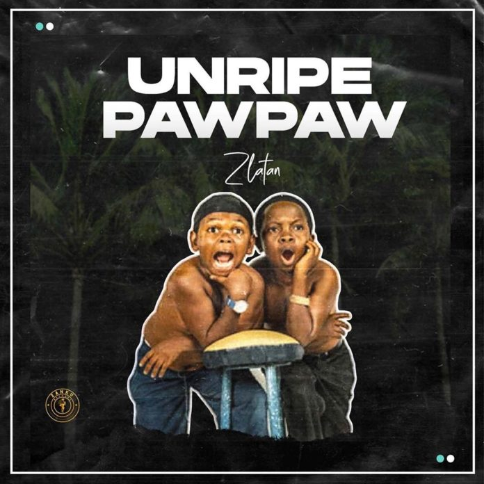 Zlatan Ft. PapiSnoop × Oberz & JamoPyper – Unripe Pawpaw