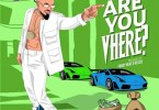 Skiibii – Are You Vhere?