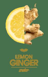 FT_Lemon-Ginger