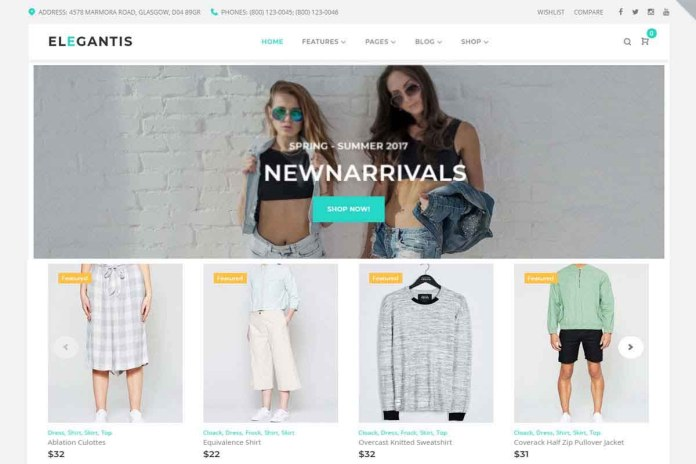 best wordpress theme for online store