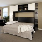 Murphy Wall Bed with Cabinets and Shelves - Perfect for small spaces