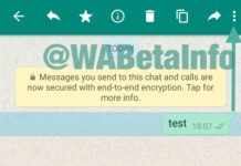 WhatsApp Beta V2.17.26