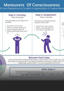 Maneuvers of Consciousness Neuroscience