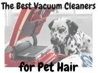 Best Vacuum For Dog Hair On Carpet 2016 - Carpet Vidalondon