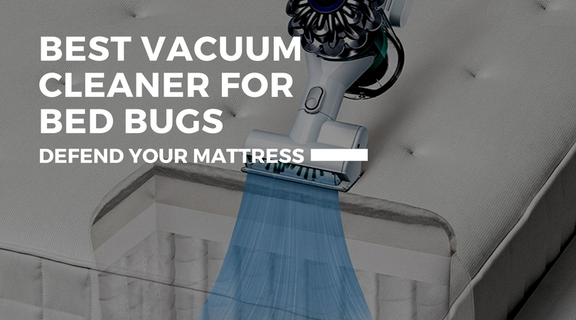 What Is The Best Vacuum Cleaner For Bed Bugs Hiding In