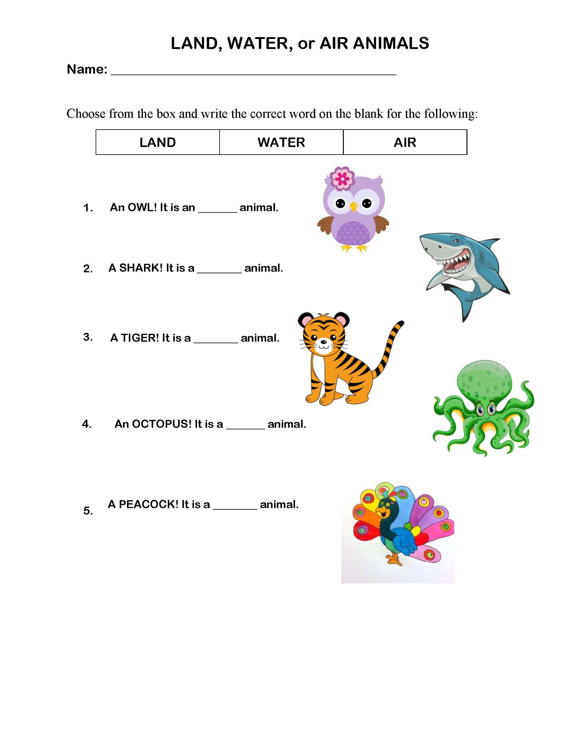 Desert Habitat Worksheet