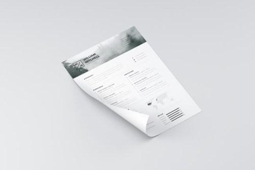Free-Minimalistic-Clean-Resume