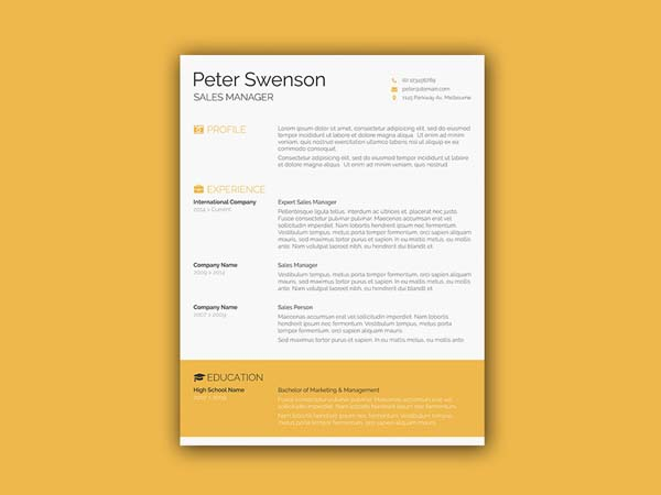 10 free accounting resume template for job seeker