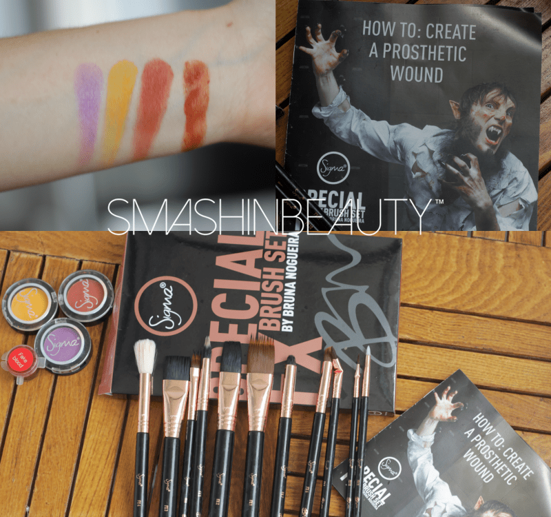 Sigma Beauty FX Brush Set Review