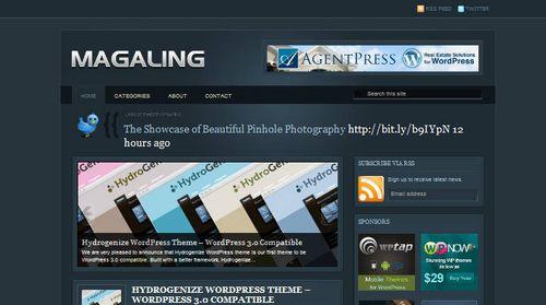 wordpress template 6 Top 20 Most Useful WordPress 3.0 Ready Themes