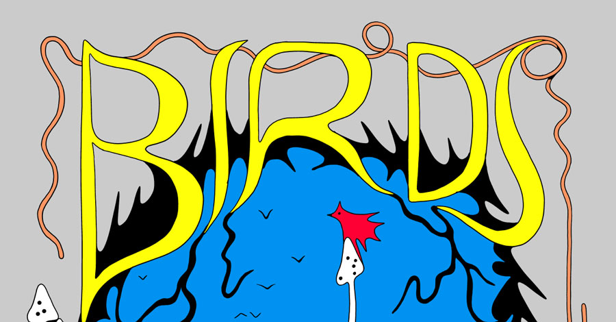 D + Q will publish Michael DeForge's 'Birds of Maine' next year