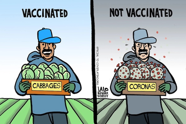 """A cartoon showing, on the left side, a man holding a box marked """"cabbages"""" with the caption """"Vaccinated"""" and on the right side, a man holding a box of coronaviruses with the caption """"Not Vaccinated"""""""