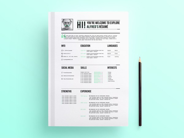 Free Professional Looking Resume Template