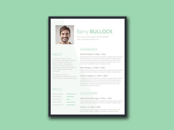 Free Conservative Resume Template with Simple Design