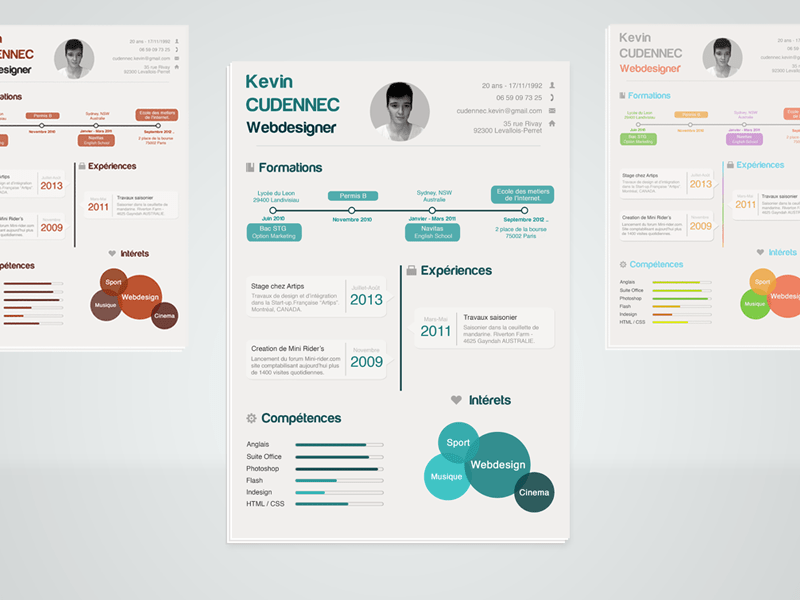 Free Infographic Resume Template in PSD File Format