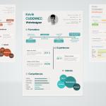 Infographic PSD Resume