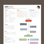 Interactive Timeline Resume