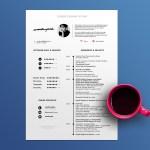 Minimalist Timeline CV