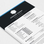 Sunay Resume Template