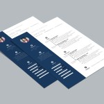 Zoki Resume Template