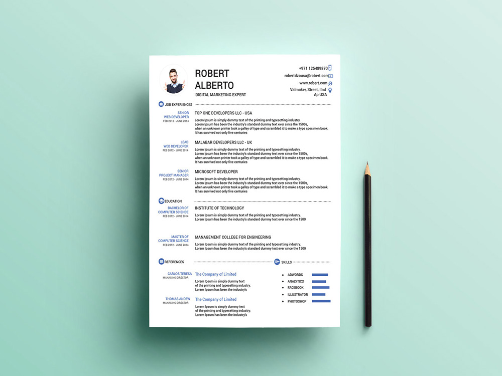 it specialist cv template.html