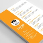 Editable Vector CV