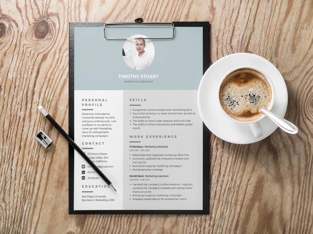 Stuart Resume Free Modern Professional Resume Template