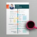 Colorful Timeline Resume